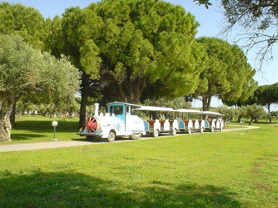 Club Lipari Hotel : le petit train pour la plage
