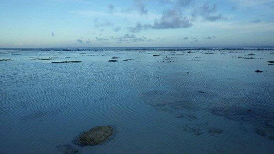 Sunset Resort: Low tide
