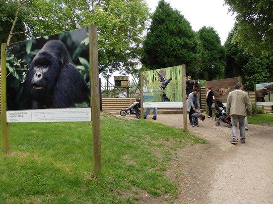 Parc Zoologique Cerza : photos mises en scène
