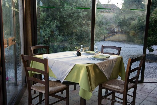 Agriturismo Marino - La Locanda del Notaro : A lovely setting, surrounded by olive trees