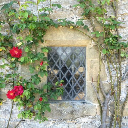 Haddon Hall : Cant get enough of the roses!