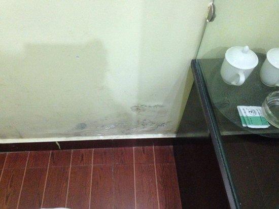 Lavande Hotel Guanghzhou Ximenkou Metro Station Guangzhou : Damp and unhealthy