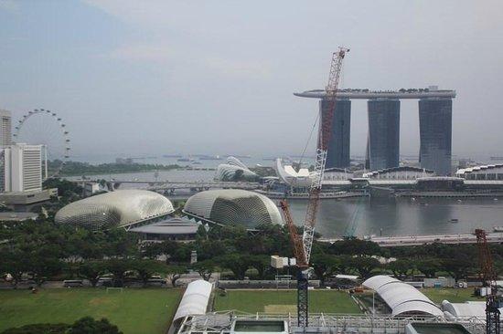Peninsula Excelsior Hotel: Вид на город и залив со смотровой площадки