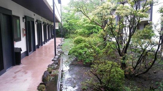 Sengokuhara Shinanoki Ichinoyu: overview of first floor