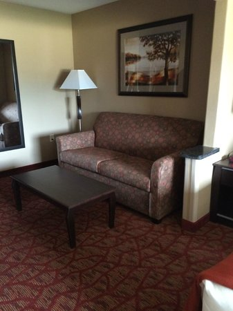 Holiday Inn Express Hotel & Suites Moab: Sleeper sofa