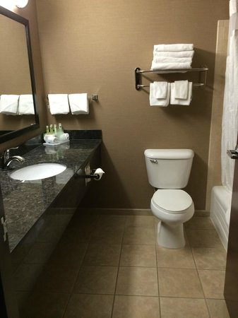 Holiday Inn Express Hotel & Suites Moab: Bathroom