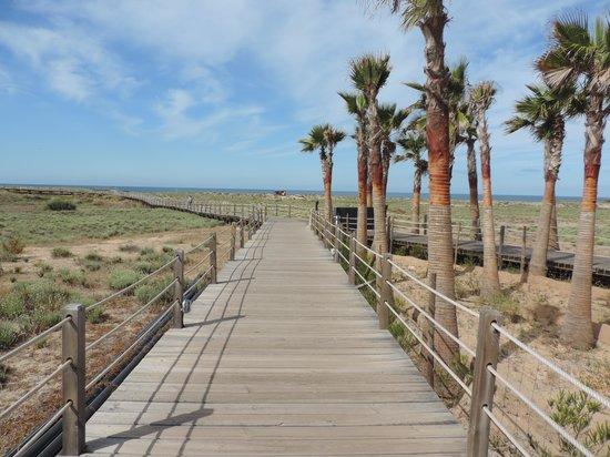 Salgados Dunas Suites: Houten steigerpaden door de duinen