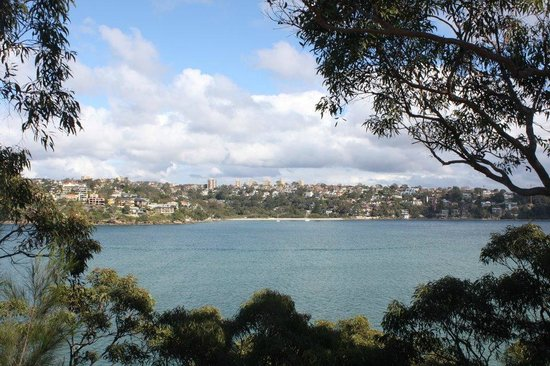 Manly Scenic Walkway: View from the start of the walk