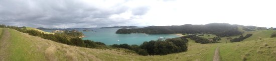 Fullers GreatSights Bay of Islands Day Tours: View from the top of Urupukapuka