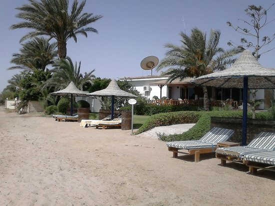 Sweet Home Egypt: Strand vor dem Kleinen Paradies