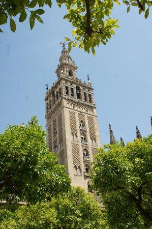 Catedral de Sevilla: Torre principal