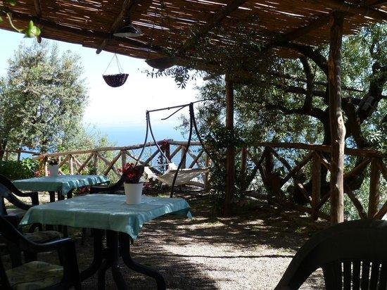Casarufolo Paradise : giardino panoramico