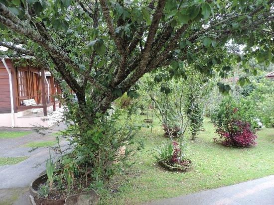 Pousada Recanto Sao Benedito: Parte externa com muitos pomares e pássaros