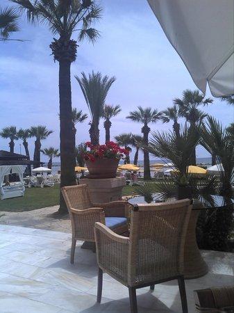 Palm Beach Hotel & Bungalows : Территория