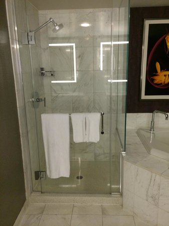 MGM Grand Hotel and Casino: Tower Spa Suite