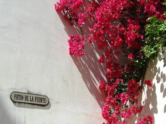 Las Casas de La Juderia: Nel patio