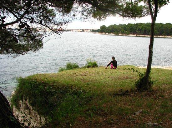 Villa Laguna Galijot: Вид на Пореч с территории отеля