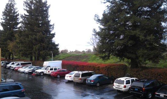 La Quinta Inn Sacramento Downtown: Вид с общей террасы