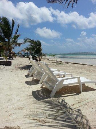 Hotel El Caballo Blanco: Loungers belonging to hotel
