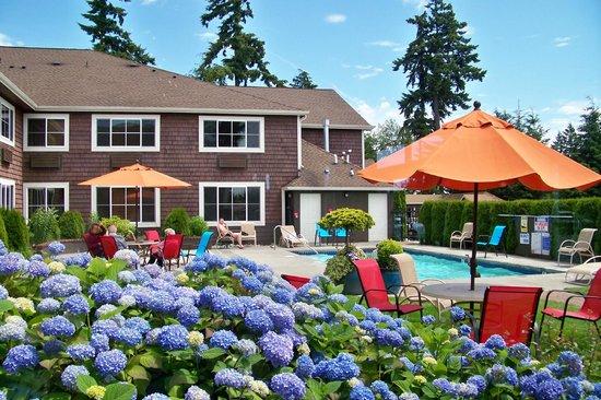 Best Western Wesley Inn & Suites: Pool area.