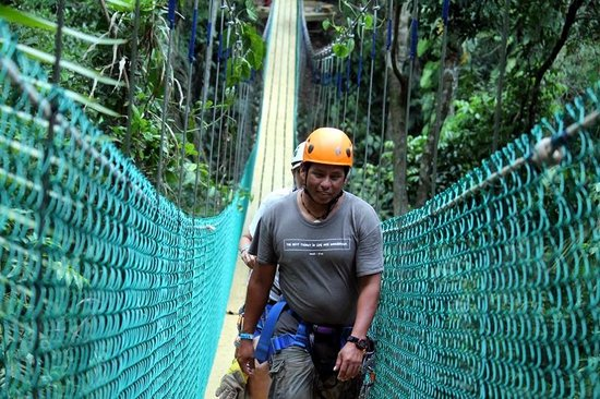 Bocawina Rainforest Resort & Adventures: Hiking to zipline