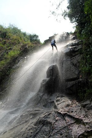 Bocawina Rainforest Resort & Adventures: Rappelling Antelope Falls