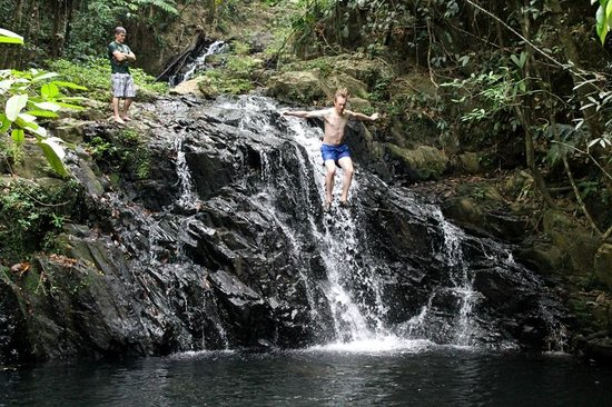 Bocawina Rainforest Resort & Adventures: Pool at top of Antelope Falls hike.