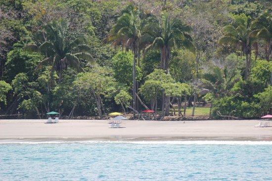 Espadilla Ocean Club: Beachfront from our trip on a catamaran