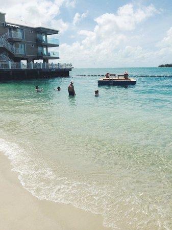 Pier House Resort & Spa: the beach and swim platform