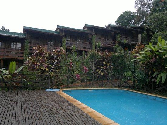 Jasy Hotel: Pileta y vista de las cabañas