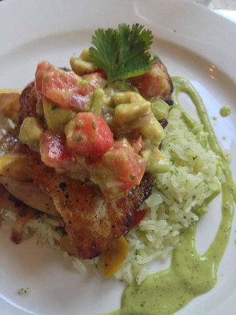 Palm Valley Fish Camp: Red Snapper with avocado tomato salsa on cilantro pesto rice paired with Sancerre wine.