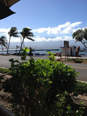 Beach Bums Bar & Grill : table view