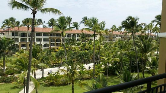 Now Larimar Punta Cana: Pool/Tropical View Room