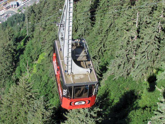 Goldbelt Mount Roberts Tramway : Your ride up and down!