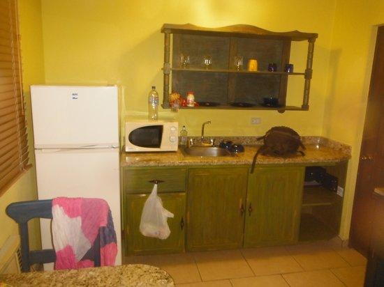 Siesta Suites: Cocineta con utensilios, refrigerador y horno microondas