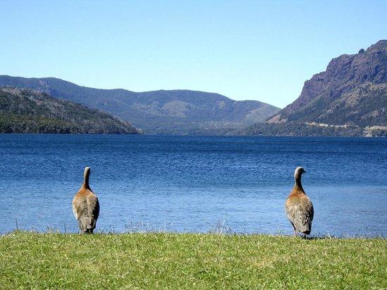Los Baqueanos: Hasta ellos no pueden dejar de mirar el paisaje.....