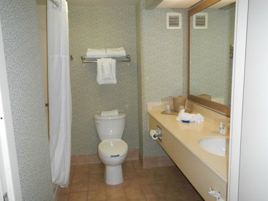 Meadowlands River Inn: Bathroom