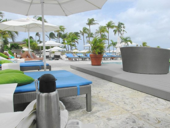 Bucuti & Tara Beach Resort Aruba: chaise longues and umbrellas at Bucuti pool