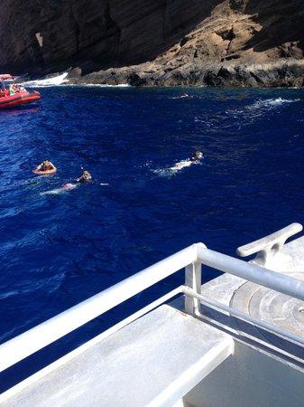 Pacific Whale Foundation : Molokini backside The wall