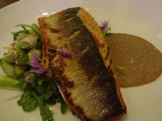 Cucina By Wolfgang Puck : Mediterranean sea bass