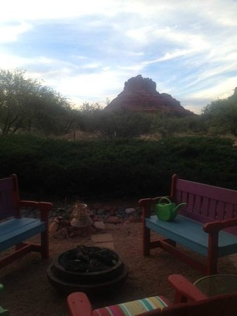 Cozy Cactus Bed and Breakfast: View from the patio