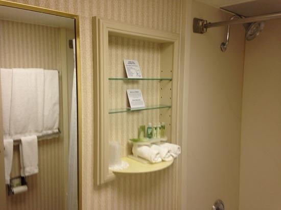 Quality Inn: bathroom.
