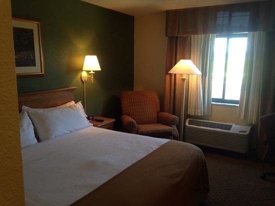 Quality Inn: room a bit small yet comfy.