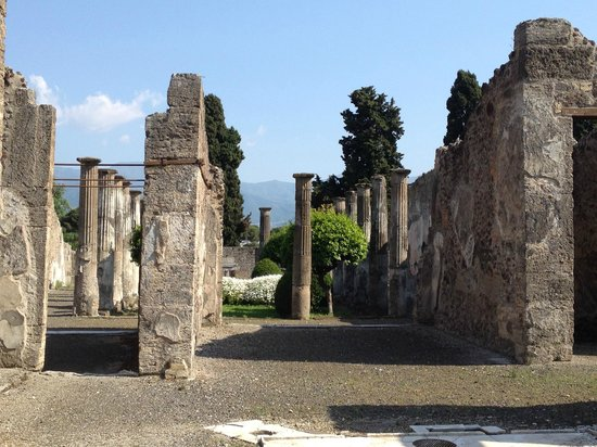 Walks of Italy : Interior view of house, looking into the garden.