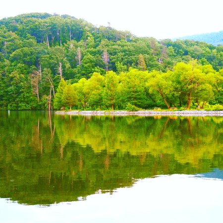 Pine Gables Cabins: View of Morse Park and Lake Lure from the dock.