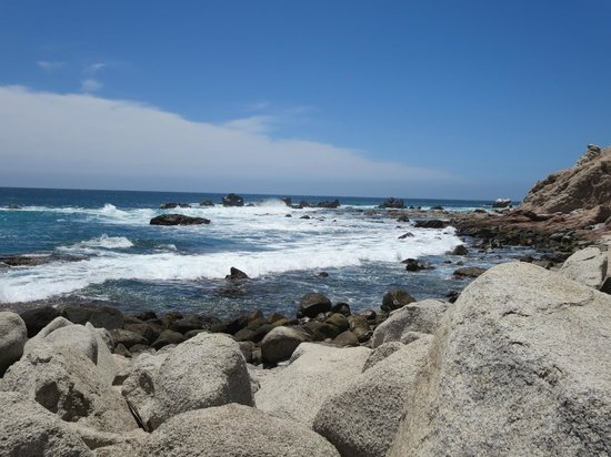 Welk Resorts Sirena Del Mar: beach area