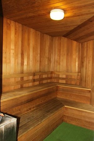 Bentleys Motor Inn: Sauna