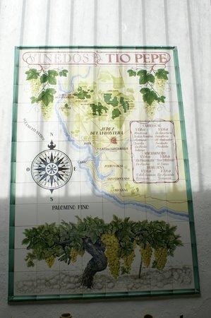 Bodegas Tío Pepe: Jerez de La Frontera, Espanha