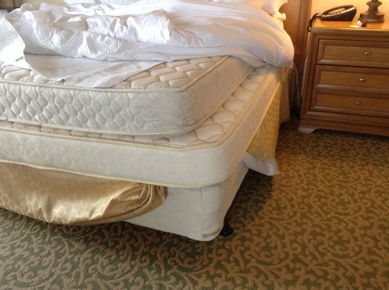 Miami Marriott Biscayne Bay: the disaster bed
