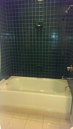 Hotel De Anza: Green tiles